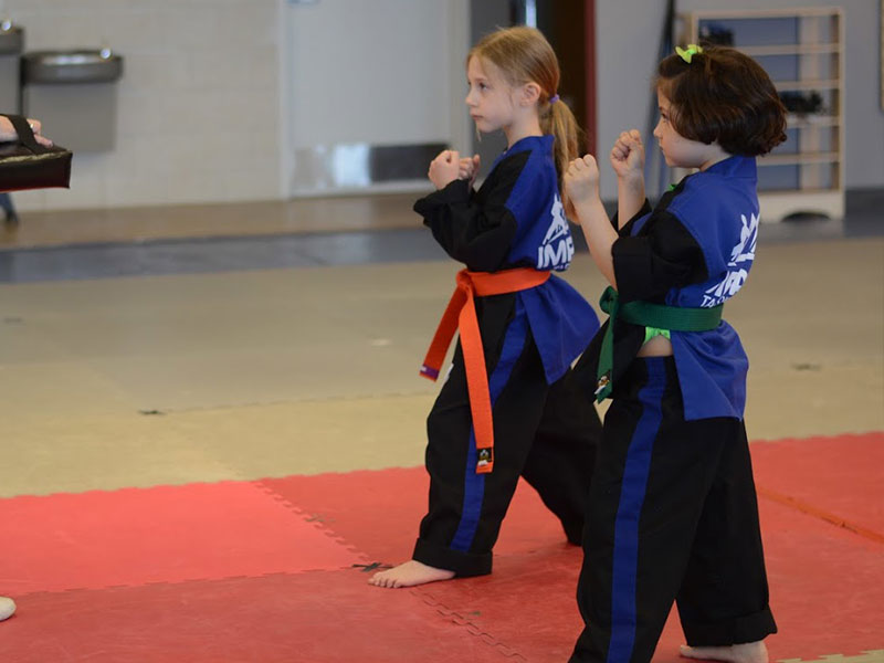 children martial arts classes in highlands ranch